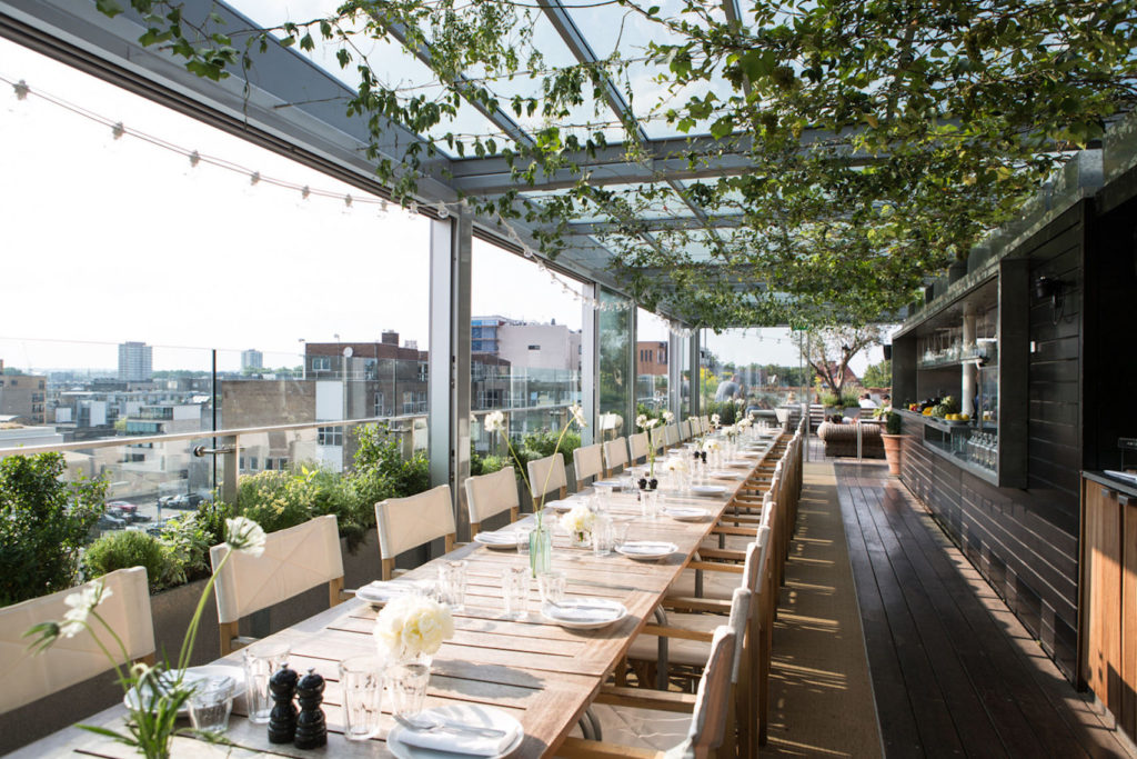 A long dinner table on an open roof top with a green plant on the pergola