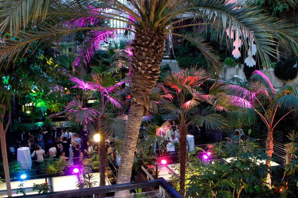 Large palm tree within The Conservatory at Barbican with a party of guests enjoying drinks