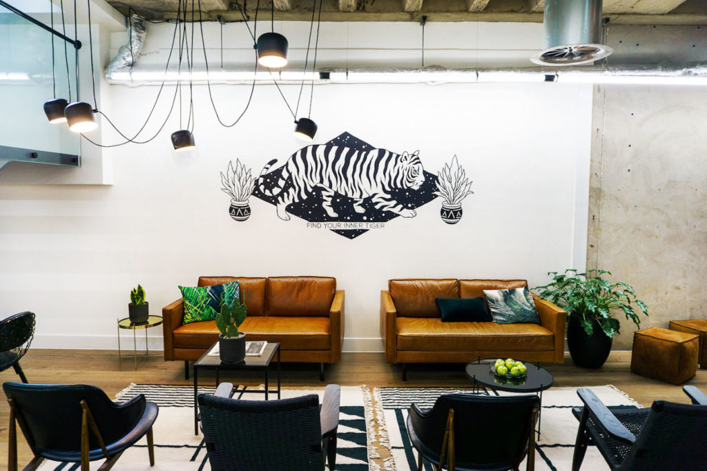 Two sets of leather seats set in front of a white wall with an image of a tiger